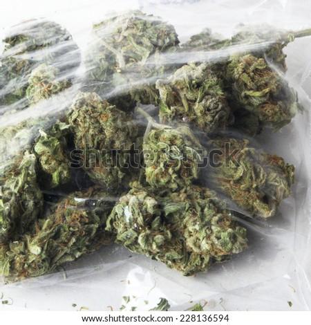 Cannabis & Marijuana Medical and Recreational Drugs  - stock photo