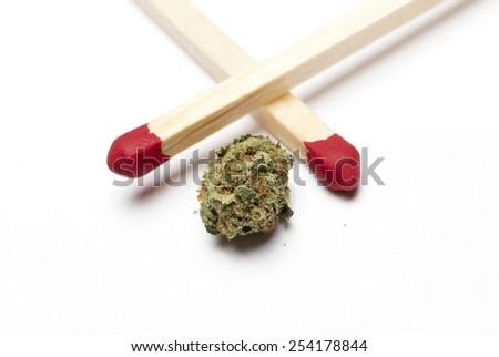 Cannabis on White Background, Marijuana  - stock photo