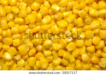 canned corn as is distributed on a plane in a complete shot - stock photo