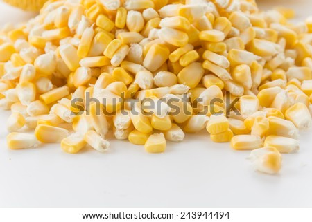 Canned Corn on white background - stock photo