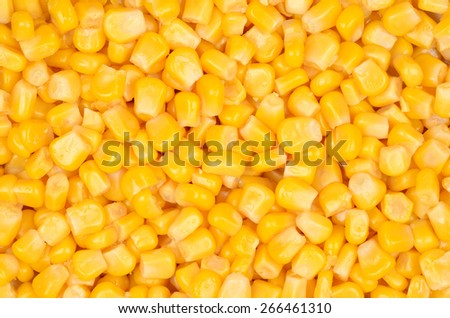 Canned corn surface texture top view. Close up.