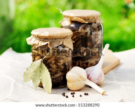 Canned Marinated Honey Fungus - stock photo