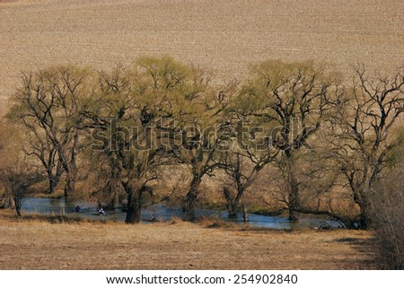 Canoeists paddle down a tree-lined river. - stock photo
