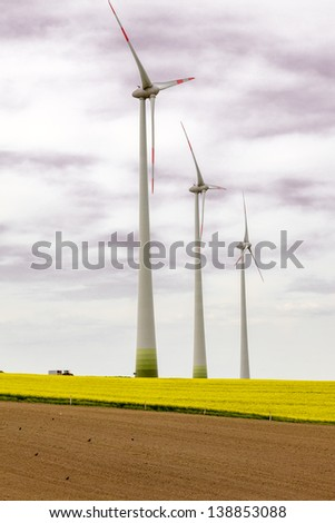 Canola field with wind turbine for energy - stock photo