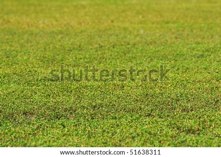 canted green grass field in perspective - stock photo