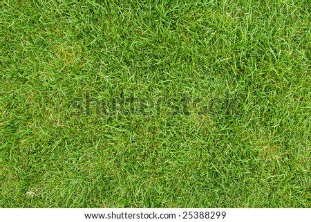 canted green grass field, view from top - stock photo