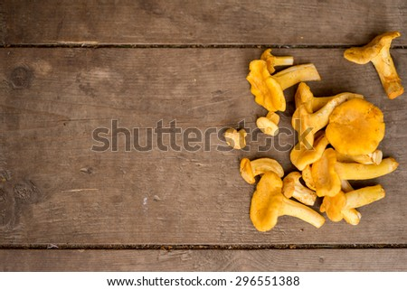 Cantharellus cibarius, commonly known as the chanterelle, golden chanterelle or girolle, is a fungus. Mushrooms on wooden background. - stock photo
