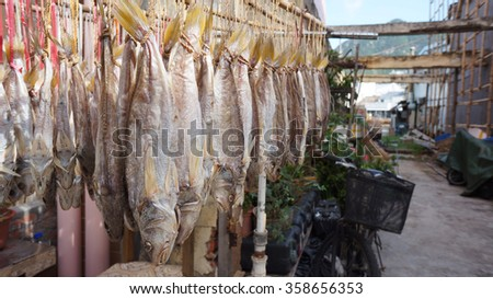 Cantonese salted fish hanging up to dry in Hong Kong fishing village, Tai O