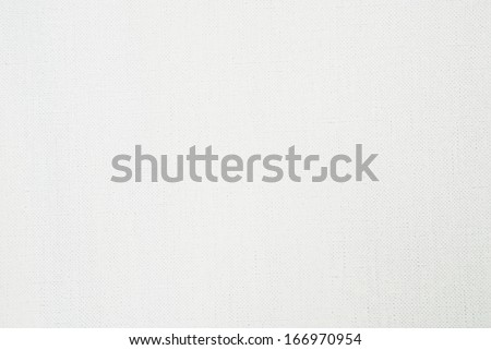 canvas texture coated by white primer - stock photo