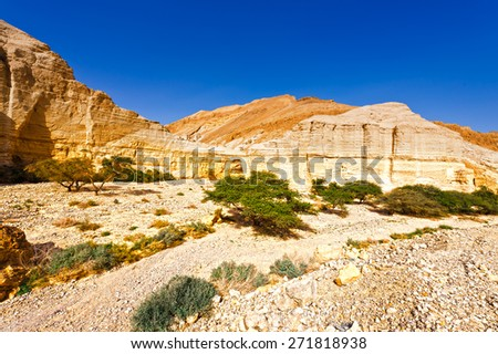 Canyon and Rocky Hills of the Negev Desert in Israel - stock photo