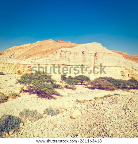 Canyon and Rocky Hills of the Negev Desert in Israel, Instagram Effect - stock photo