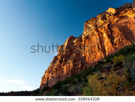 Canyon at sunset in Zion national park - stock photo