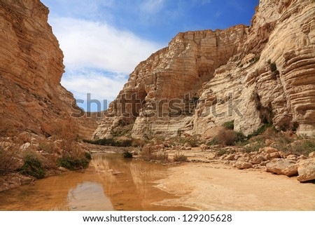 Canyon in national park Ein-Avdat in Negev stony desert (Israel)