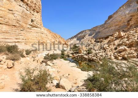 Canyon in national park Ein-Avdat in Negev stony desert (Israel) - stock photo