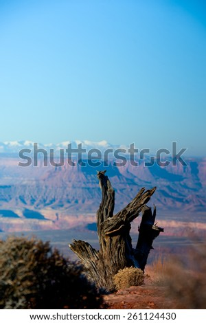 Canyonlands - stock photo