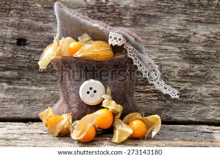 cape gooseberries - stock photo