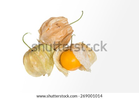 Cape Gooseberry or Physalis fruit isolate on white background