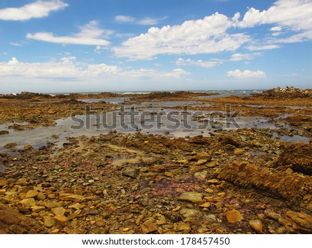 cape recife nature reserve, south africa - stock photo