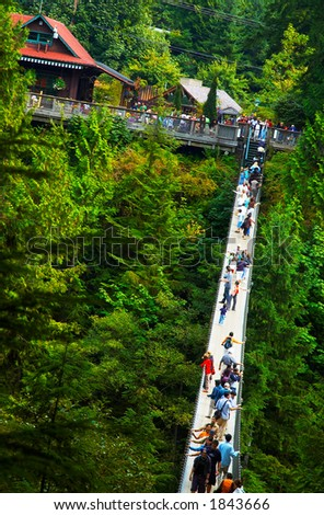 Capilano Suspension Bridge over deep valley at Vancouver. More with keyword group14j