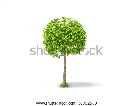 capital tree on white background