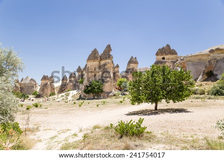 "Cappadocia, Turkey. ""Glade"" with stone ""mushrooms"" in the Valley of the Monks (Pashabag Valley)"