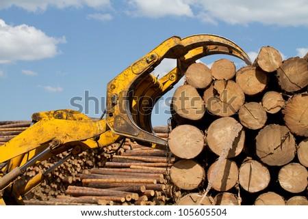 Captures a timber loader - stock photo