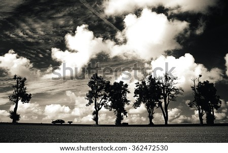 Car and isolated trees on a horizontal line against dramatic sky. Black and white. Sky is full of clouds. - stock photo