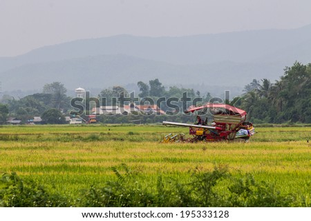Car harvest - stock photo