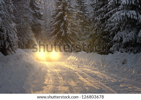 Car lights at nighttime in pine forest with lost of snow - stock photo