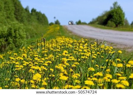 Car moving by road, focus on front of wayside, small deep of view. - stock photo