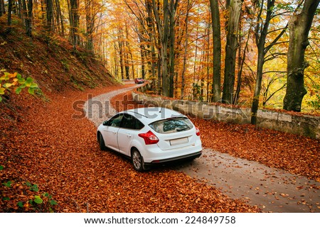 car on a forest path - stock photo