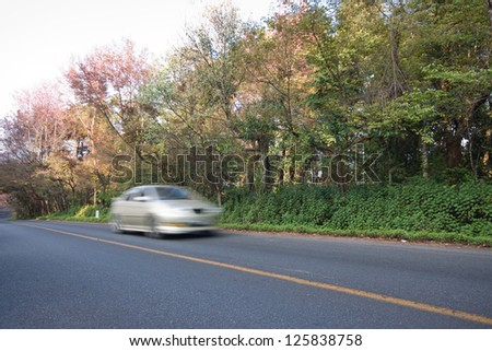 Car On The Road