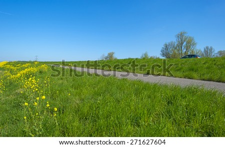 Car parked along a road in spring - stock photo
