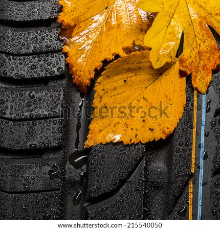 car tire profile with autumn leaves and raindrops - stock photo