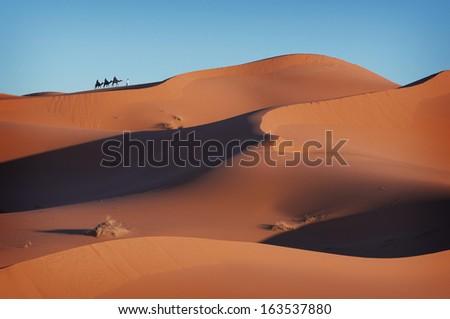 Caravan in the Sahara, Caravan, Desert, Dunes, Sand, Camels, Morocco, Africa - stock photo