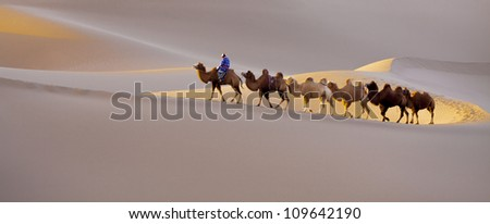 Caravan in Xinjiang desert - stock photo