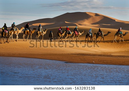 Caravan of tourists passing desert lake on camels during their lifetime adventure trip - stock photo
