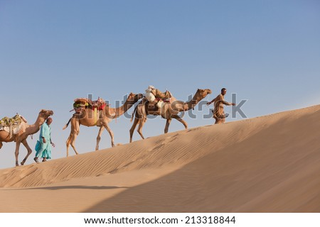 Caravan with bedouins and camels in sand dunes in desert at sunset under clean blue sky  - stock photo