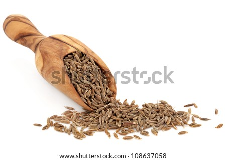 Caraway seed in an olive wood scoop and scattered over white background. - stock photo