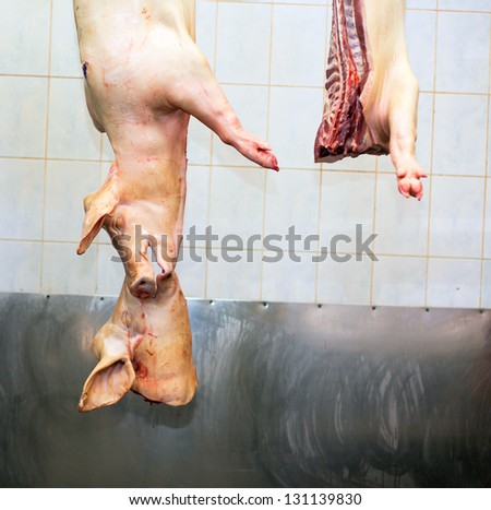 carcasses of pigs in row in meat factory - stock photo