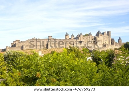 Carcassonne castle in France with some trees in front of it