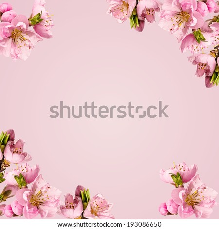Card with peach flowers