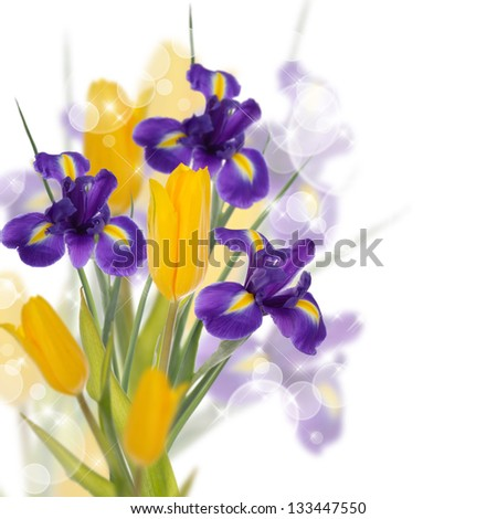 Card with tulips and irises - stock photo
