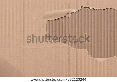 Cardboard texture. Realistic torn cardboard background.