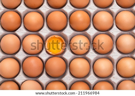Cardboard tray filled with brown eggs, one egg is broken - stock photo