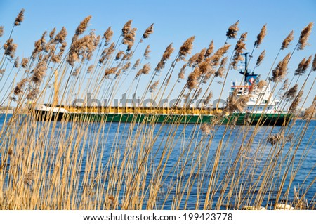 Cargo ship on river - through the reeds - stock photo