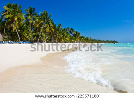 Caribbean Beach and Palm tree  .Paradise. Vacation and Tourism concept. - stock photo