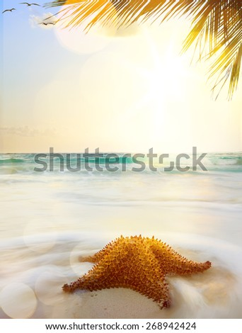 caribbean beach in sunset time  - stock photo