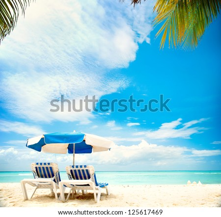 Caribbean Beach.Paradise. Vacation and Tourism concept. Sunbeds and Palm tree