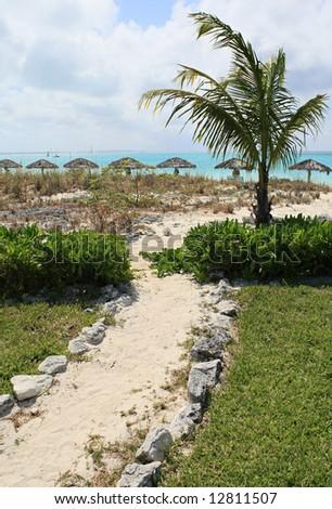 Caribbean beach path - stock photo